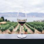 Idée cadeau pour les amateurs de vin : une initiation à l'œnologie